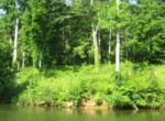 LOT 5A Lee Road 346, Salem, AL 36874 (4)