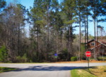 Lot 121 Lee Road 2117, Salem, AL 36874 (19)