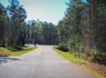 Lot 121 Lee Road 2117, Salem, AL 36874 (20)