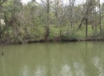 Lot #38 Lee Road 353, Valley, AL 36854 (1)