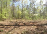 Lot #38 Lee Road 353, Valley, AL 36854 (2)
