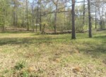 Lot #38 Lee Road 353, Valley, AL 36854 (3)