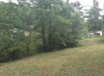 Lot #38 Lee Road 353, Valley, AL 36854 (4)