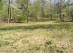 Lot #38 Lee Road 353, Valley, AL 36854 (5)