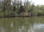 Lot #38 Lee Road 353, Valley, AL 36854 (6)