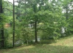 Lot #38 Lee Road 353, Valley, AL 36854 (7)