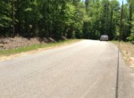 LOT 36 Lee Road 353, Valley, AL 36854 (4)